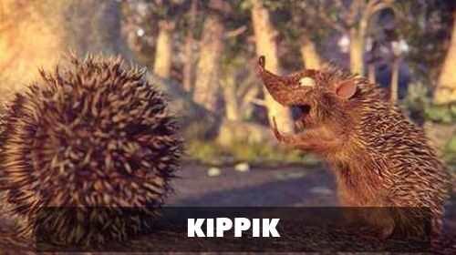 Kippik || Libreplay, 1re plateforme de référencement et streaming de films et séries libre de droits et indépendants.